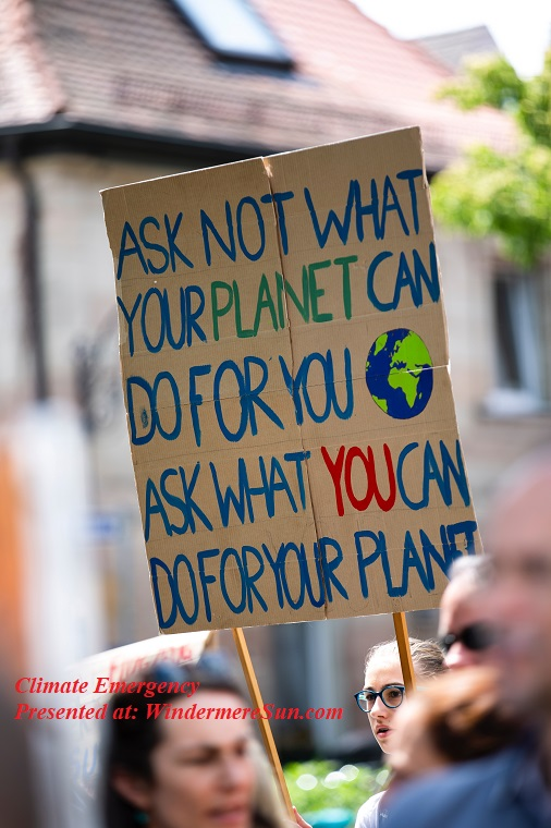 Climate emergency, not as what your contry can do for you, activist-appeal-blue-2559762 final