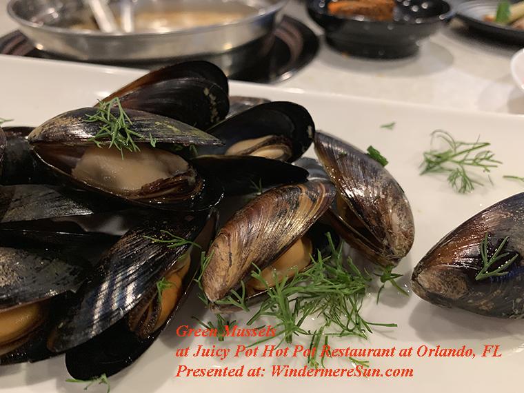 Green Mussels-2 final