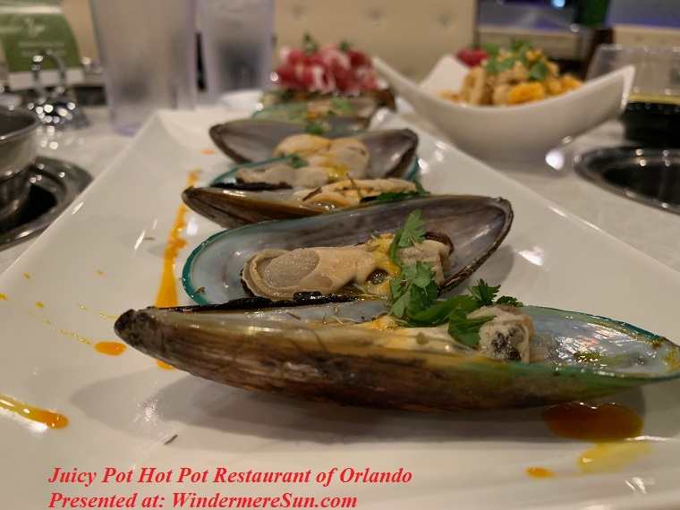 Juicy Pot-5 mussels final