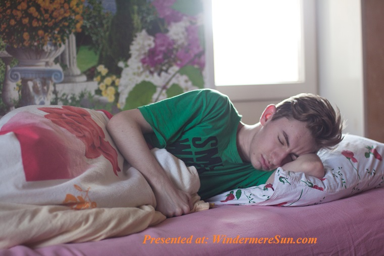 boy asleep in bed, bed-bedroom-boy-296817 final