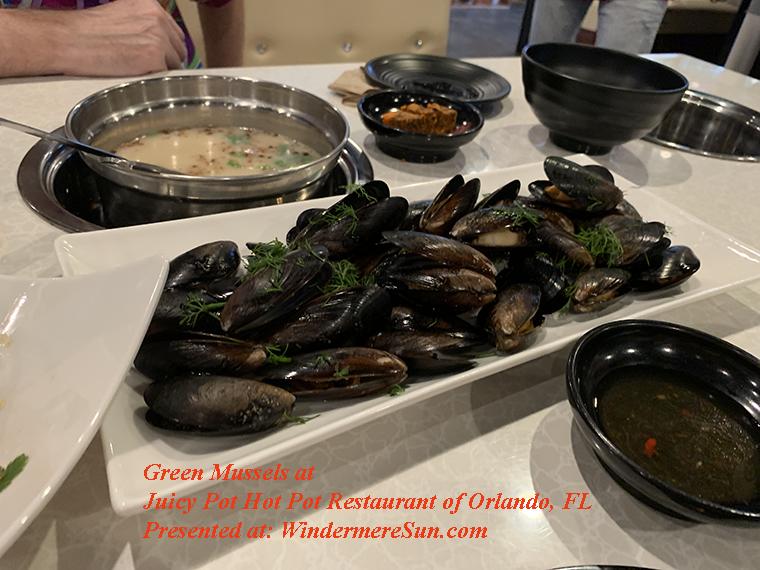green mussels final