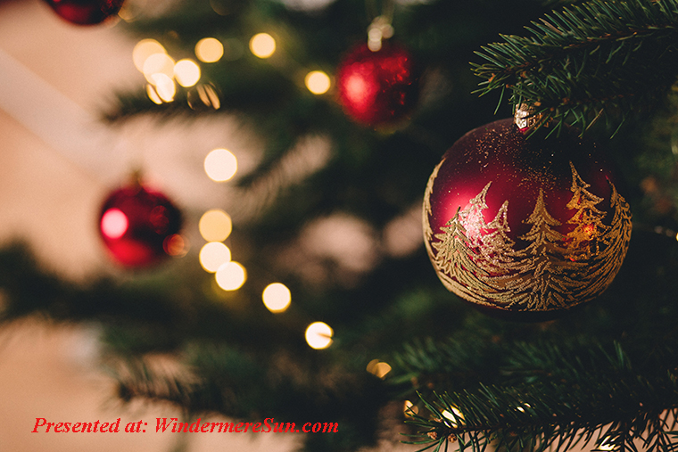 christmas-tree-with-baubles-717988 (1) final