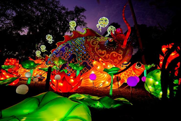 Central Florida Zoo and Botanical Gardens 2020