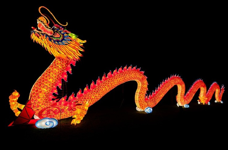 Dragon lantern provided by Central Florida Zoo and Botanical Gardens final