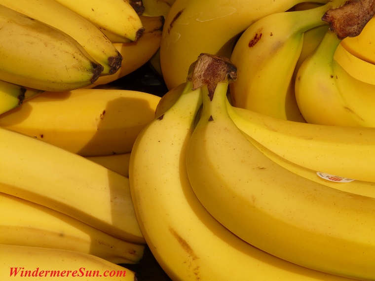 banana-fruit-healthy-yellow-41957 final