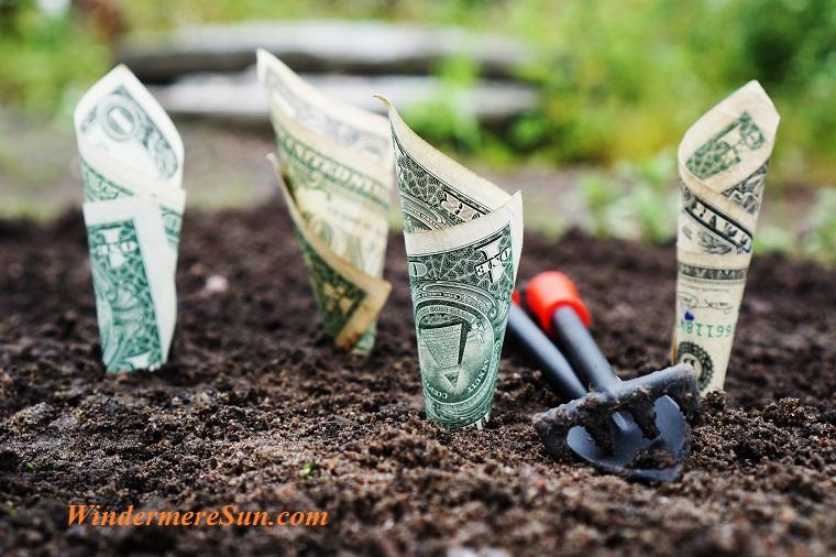 money would grow,pexels-photo-164474 final