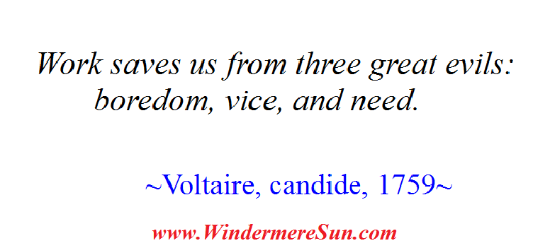 Voltaire on Work final