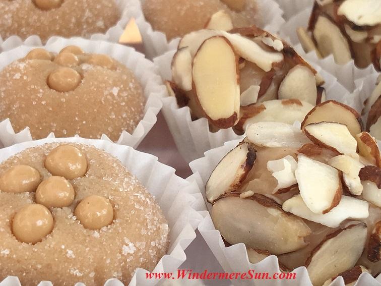 Windermere Farmer's Market-BrigadeiroGo-Almonds,Caramel1 final