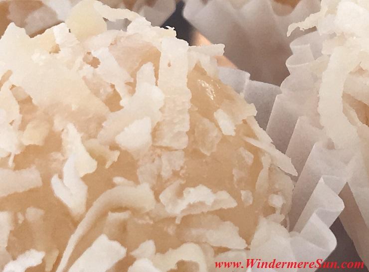 Windermere Farmer's Market-BrigadeiroGo-Coconut2 final