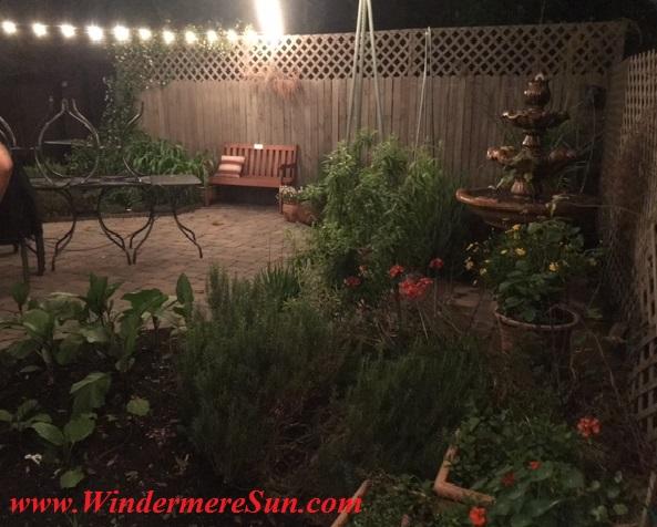 K Restaurant-backyard garden final
