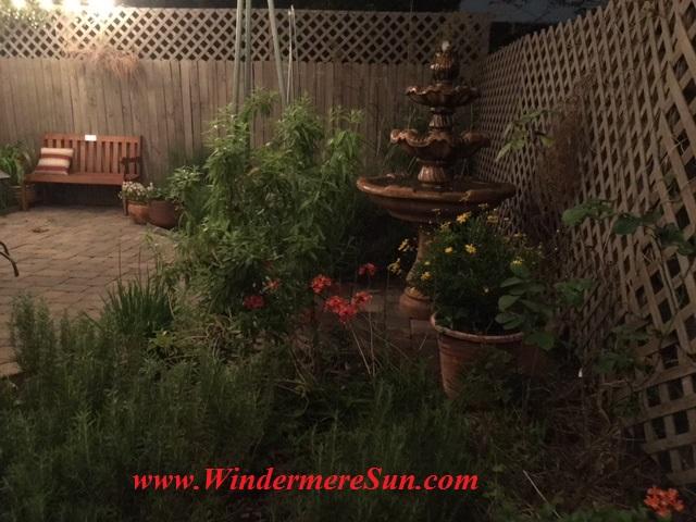 K Restaurant-backyard garden2 final