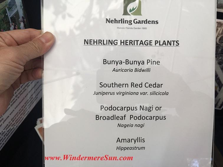 Windermere Treebute-Nehrling Gardens1 final