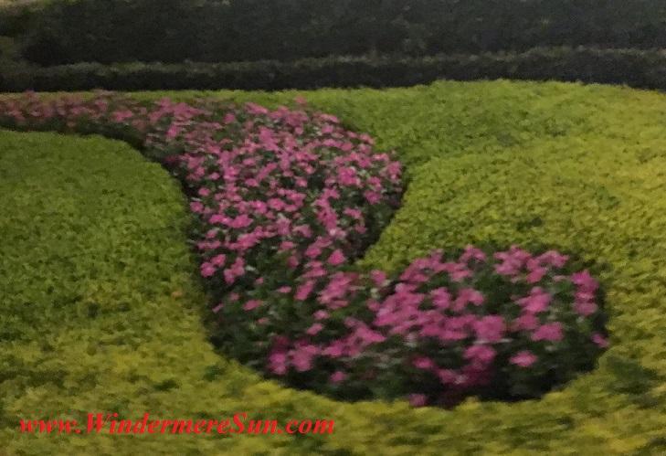 Disney-MagicKingdom-flower display final