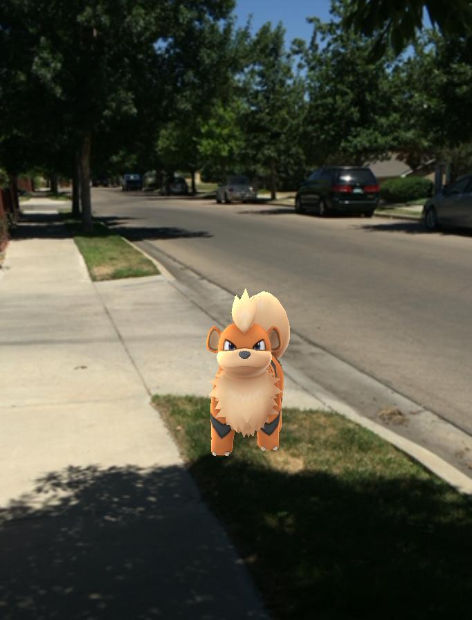 Pokemon4 of (credit- Marina Nunamaker) final
