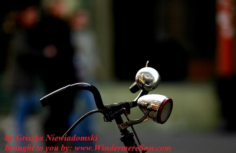 bike- old-bike-1565348, freeimages, by Griszka Niewiadomski final