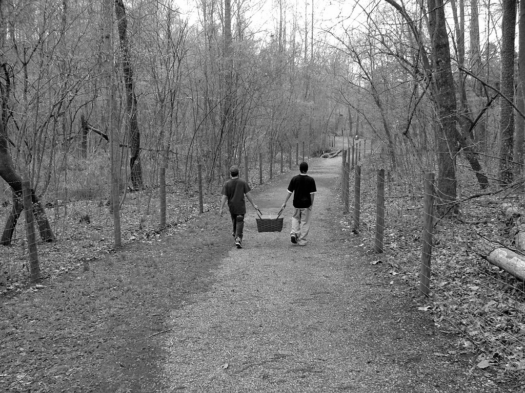picnic-walk-1484411, freeimages, by Dana Hughes