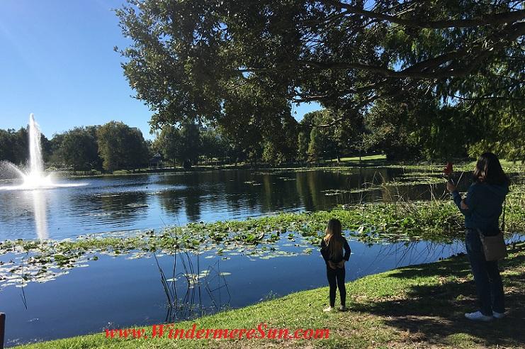 looking-at-lake-lily-park-final