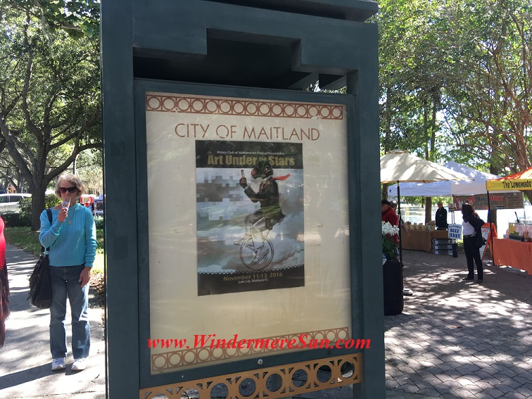 maitland-arts-under-stars-final