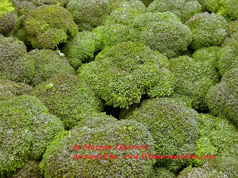 broccoli-1187922-freeimages-by-margan-zajdowicz-final