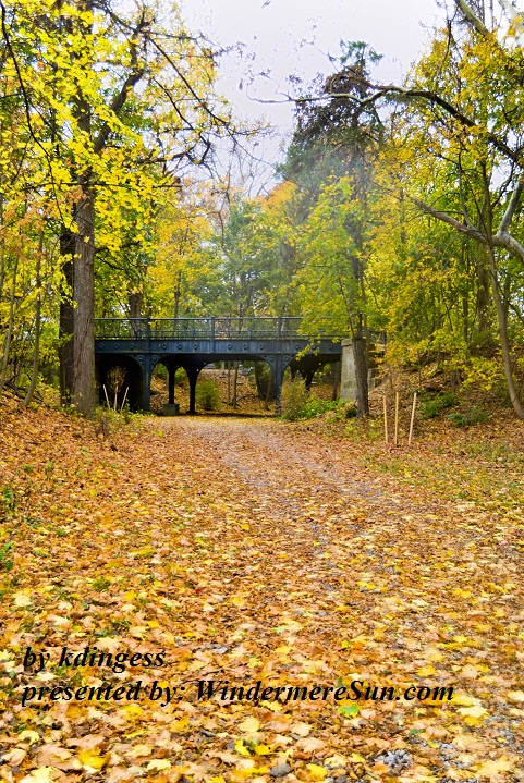 fall-walk-1202532-freeimages-by-kdingess-final