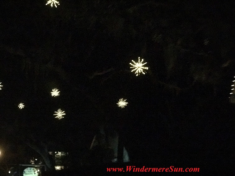 christmas-lights-stars-in-the-tree-final