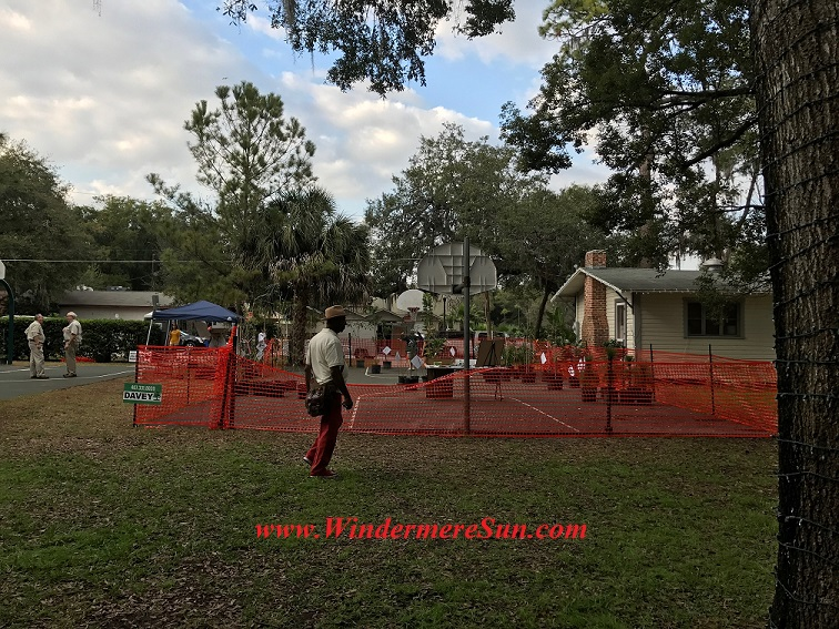 fenced in seedlingls final