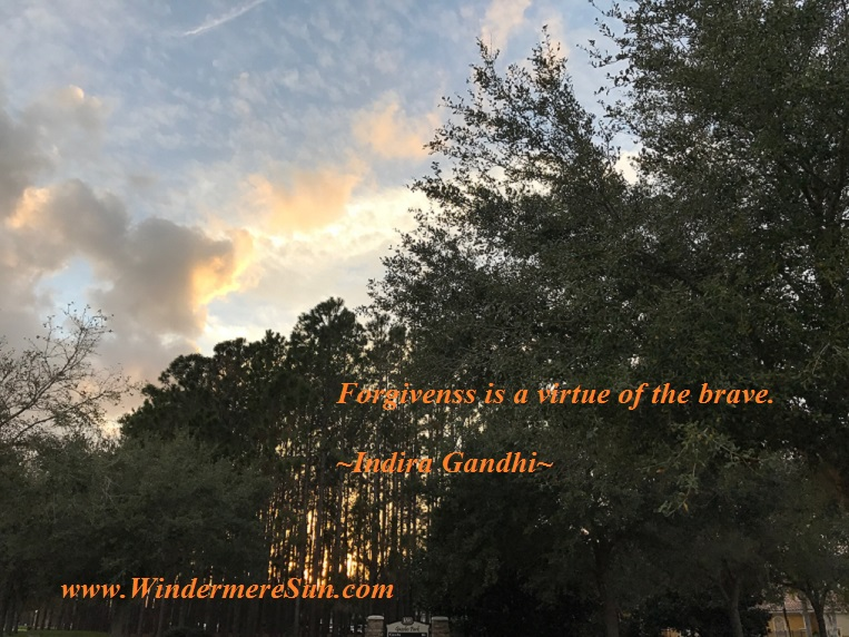 Forgiveness is a virtue of the brave, 3-4-2017 quote final