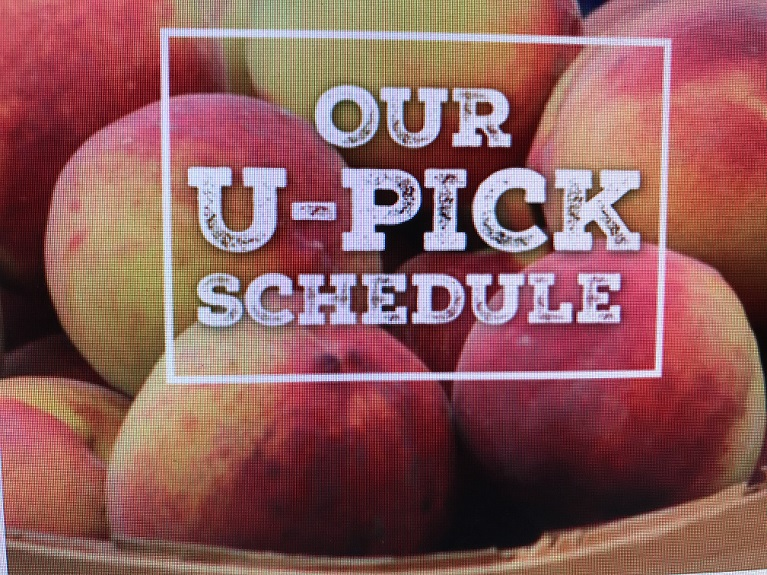 Uncle Matt's U Pick Schedule Photo final