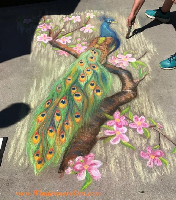 peacock final