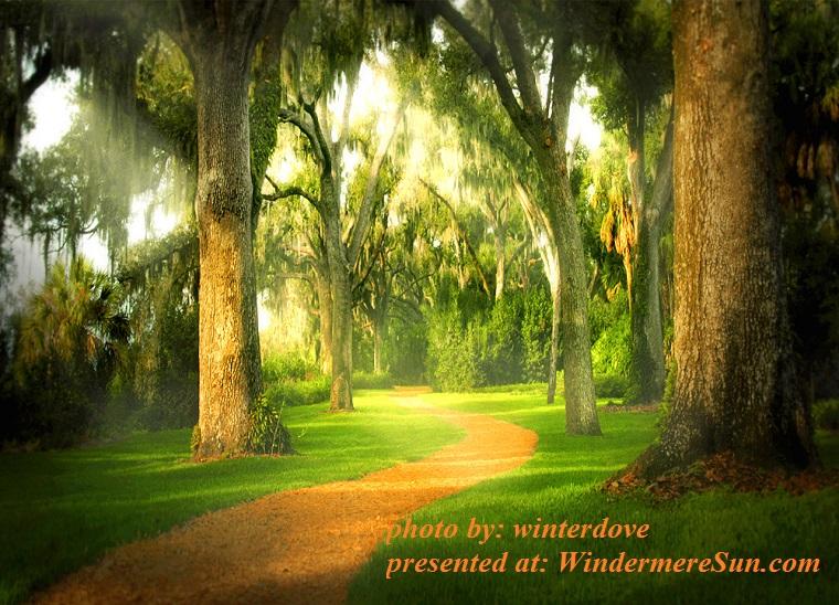 bok-sanctuary-path-1250773, by winterdove final