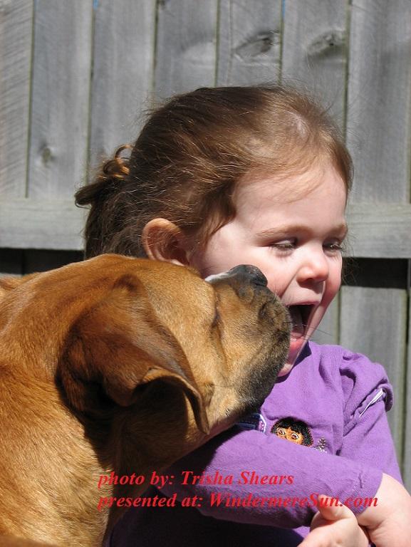 dog-licks-girl-1401762, by Trisha Shears final