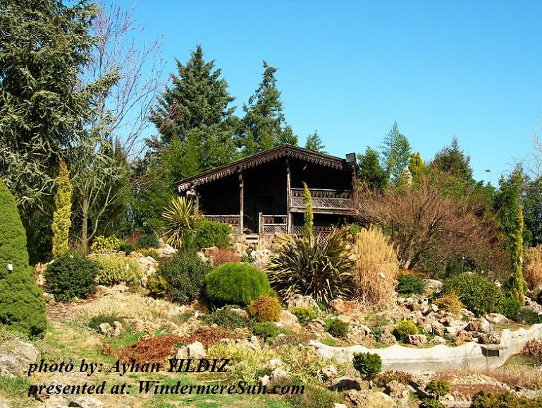 my-garden-1579279, by Ayhan YULDIZ final