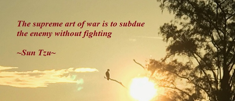 Supreme Art of War, by Sun Tzu, quote of 8-12-2017 final short