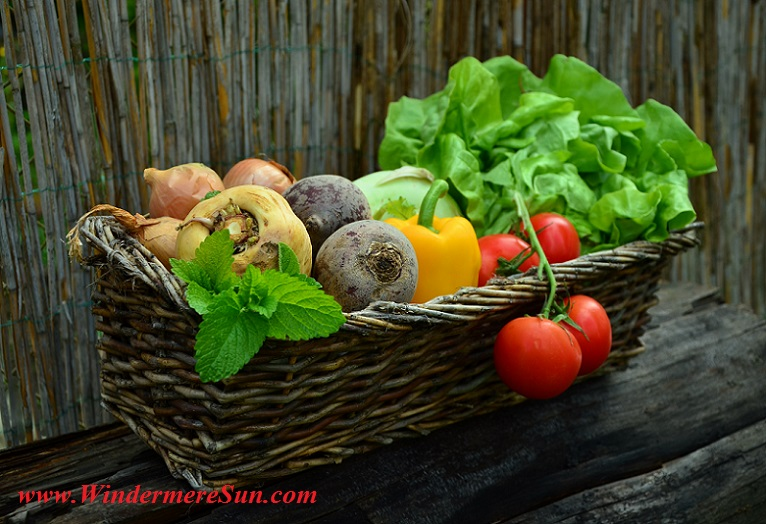 vegetables-vegetable-basket-harvest-garden final