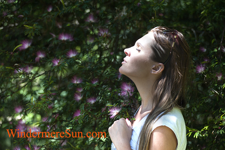 meditation-7-pexels-photo-321576 final