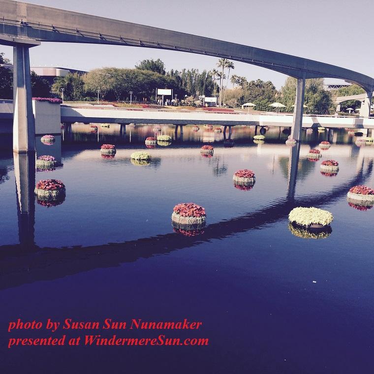 Epcot-flower display in water1 final