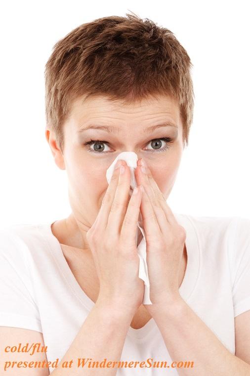 allergy-cold-disease-flu-41284 final