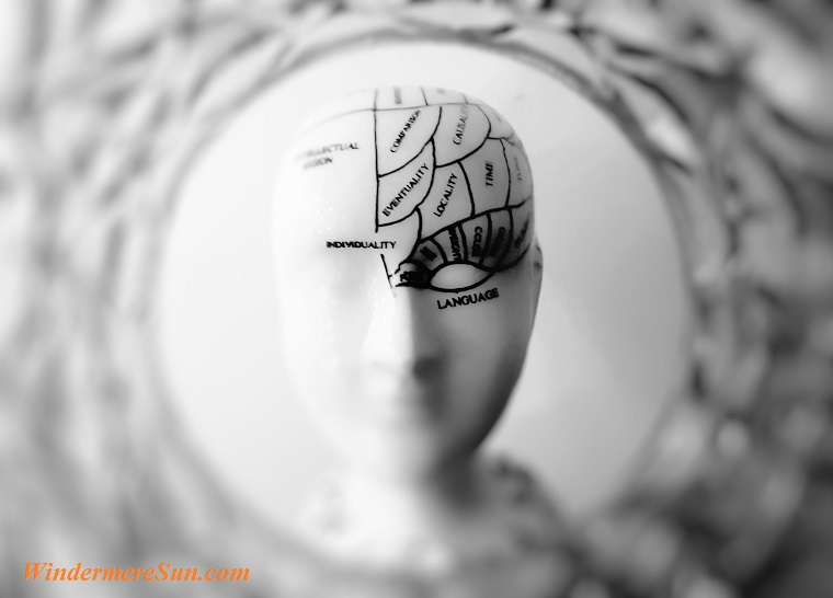 brain, abstract-art-black-and-white-724994 final