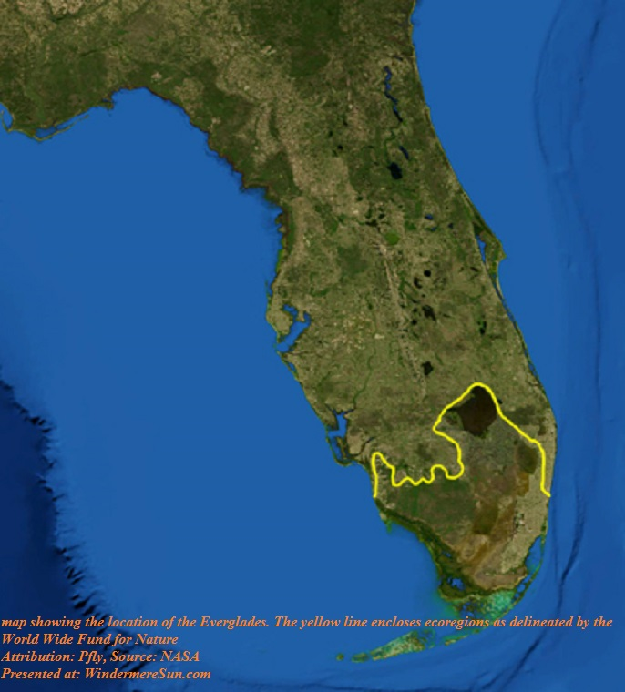 Everglades, location of the Everglades. The yellow line encloses ecoregions as delineated by the World Wide Fund for Nature, PD final