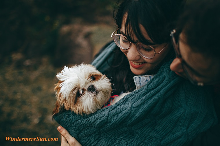 pet of 9-22-2018, pet owners, adult-animal-animal-lover-1378849 final