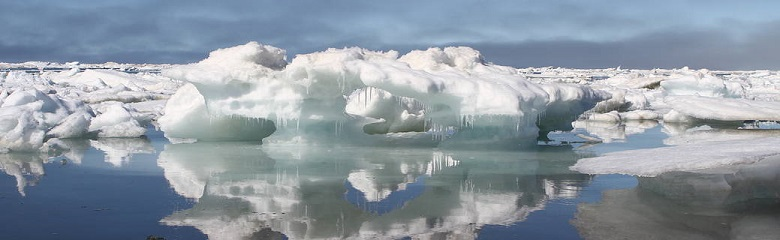 New Normal of Sea Ice final