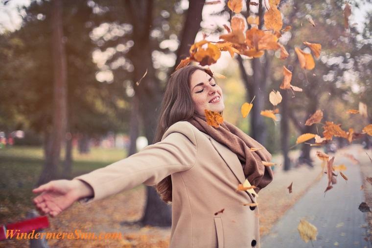 air-arm-autumn-762041 final