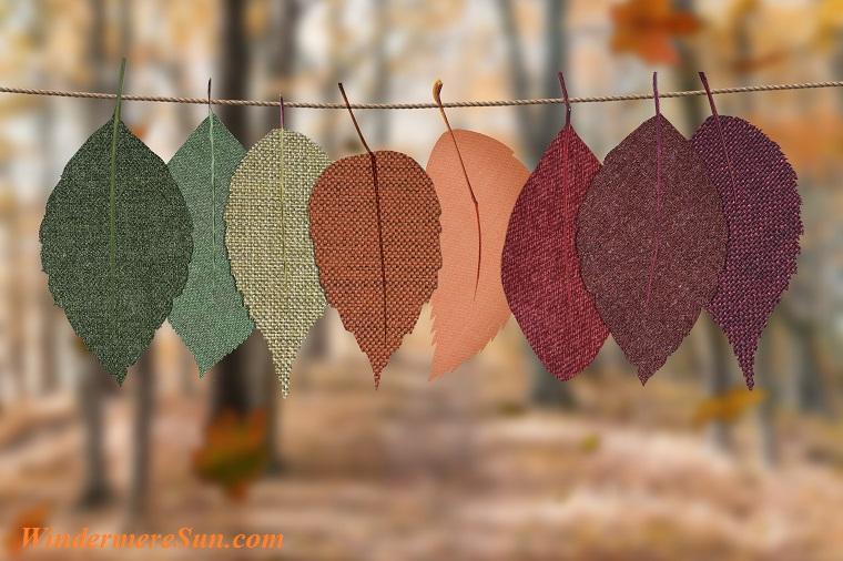 autumn-autumn-colors-autumn-colours-1389460 final