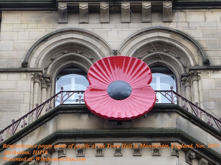 Poppy, Remembrance_Poppy_an_der_Manchester_Town_Hall, attribution-HH58 final