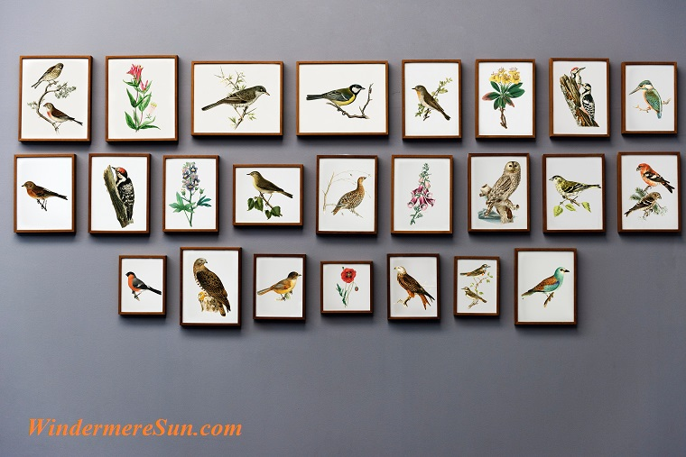 birds and plants, animal-art-art-gallery-730803 final