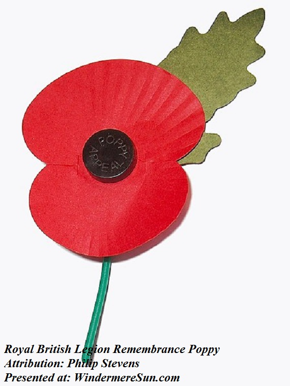 poppy, artificial corn poppy, Royal_British_Legion's_Paper_Poppy_-_white_background, commorating those who fell in WWI, attribution-Philip Stevens final
