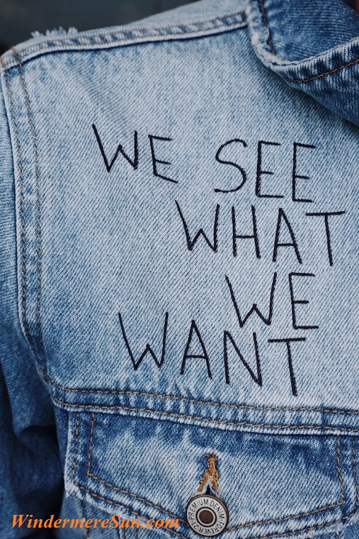 we see what we want, blue-button-close-up-1176618 final