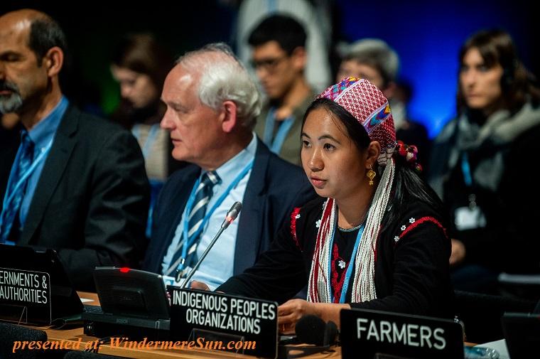 Indigenous Peoples Organizations final