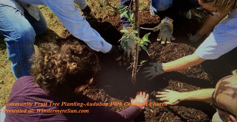 Fruit Tree Planting final