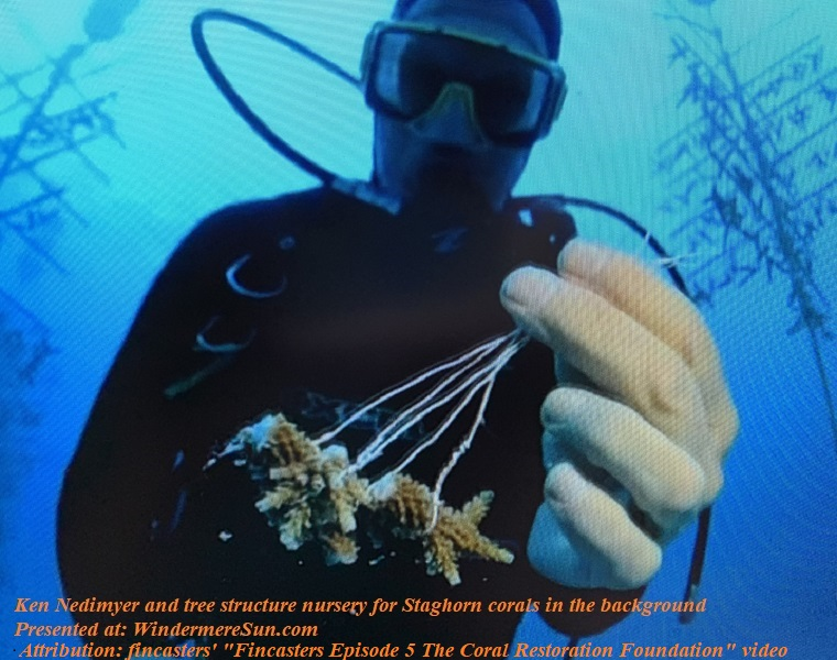 Ken Nedimyer and tree structure nursery for Staghorn corals in background final